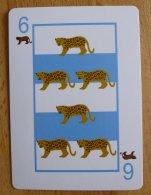 6 of Pumas